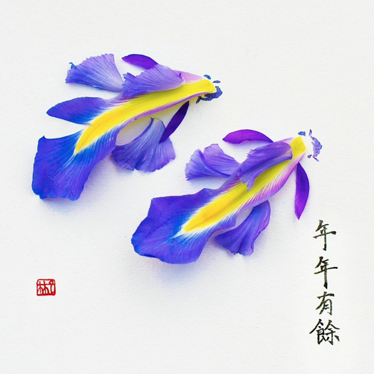 lim-zhi-wei10