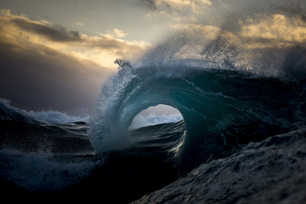 ray-collins1